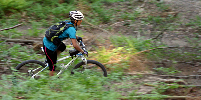 A Singletrack Skills coach explains The Fundmentals of mountain biking
