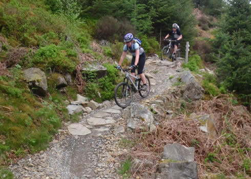 Riding The Beast at Coed y Brenin